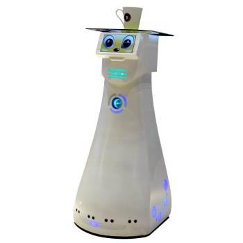 智能佳迪娜机器人